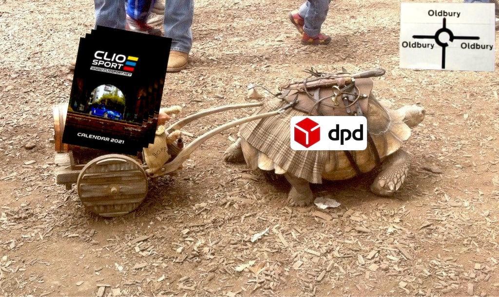 dpd tortoise.jpg