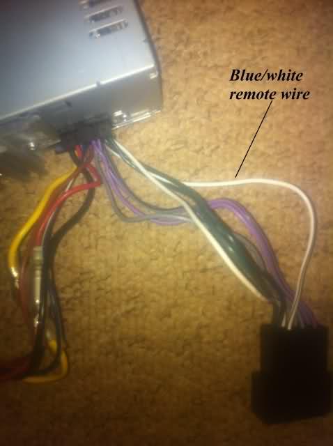 JVC Head Unit - remote wire sub/amp problem, help! | ClioSport.netClioSport.net