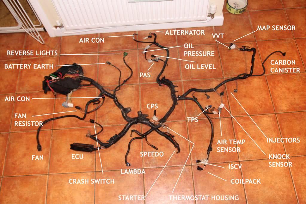 Renault Clio Sport 172 Wiring Diagram : Renault clio wiring loom diagram somurich